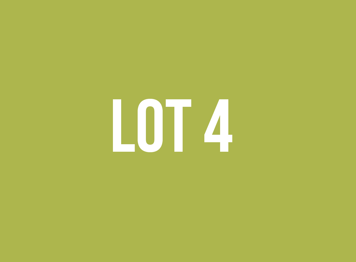 lot4.png