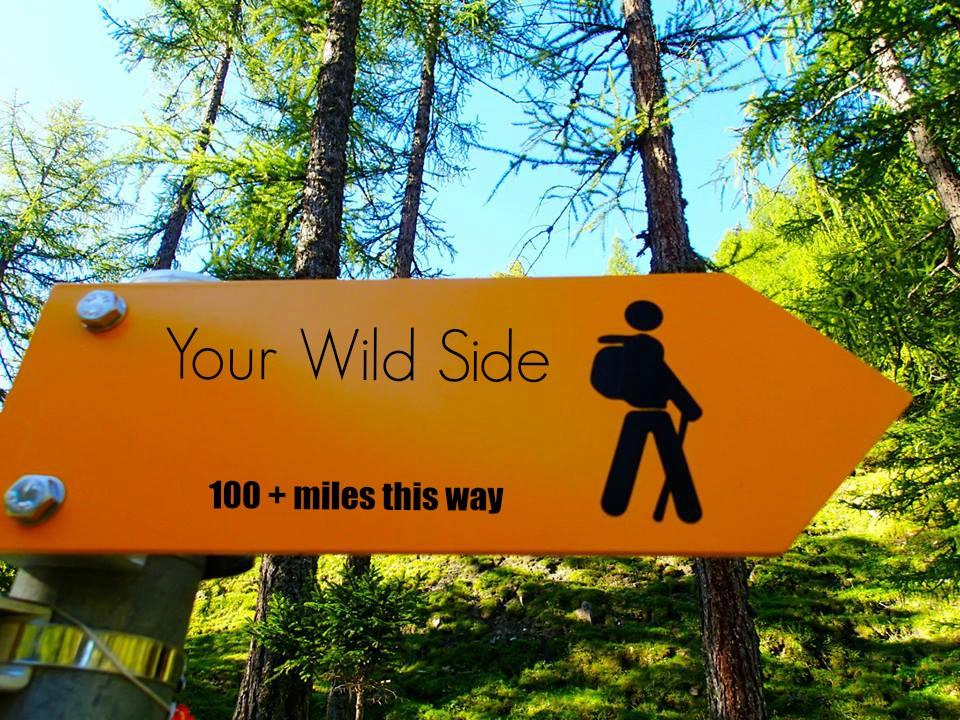 wildside.jpg