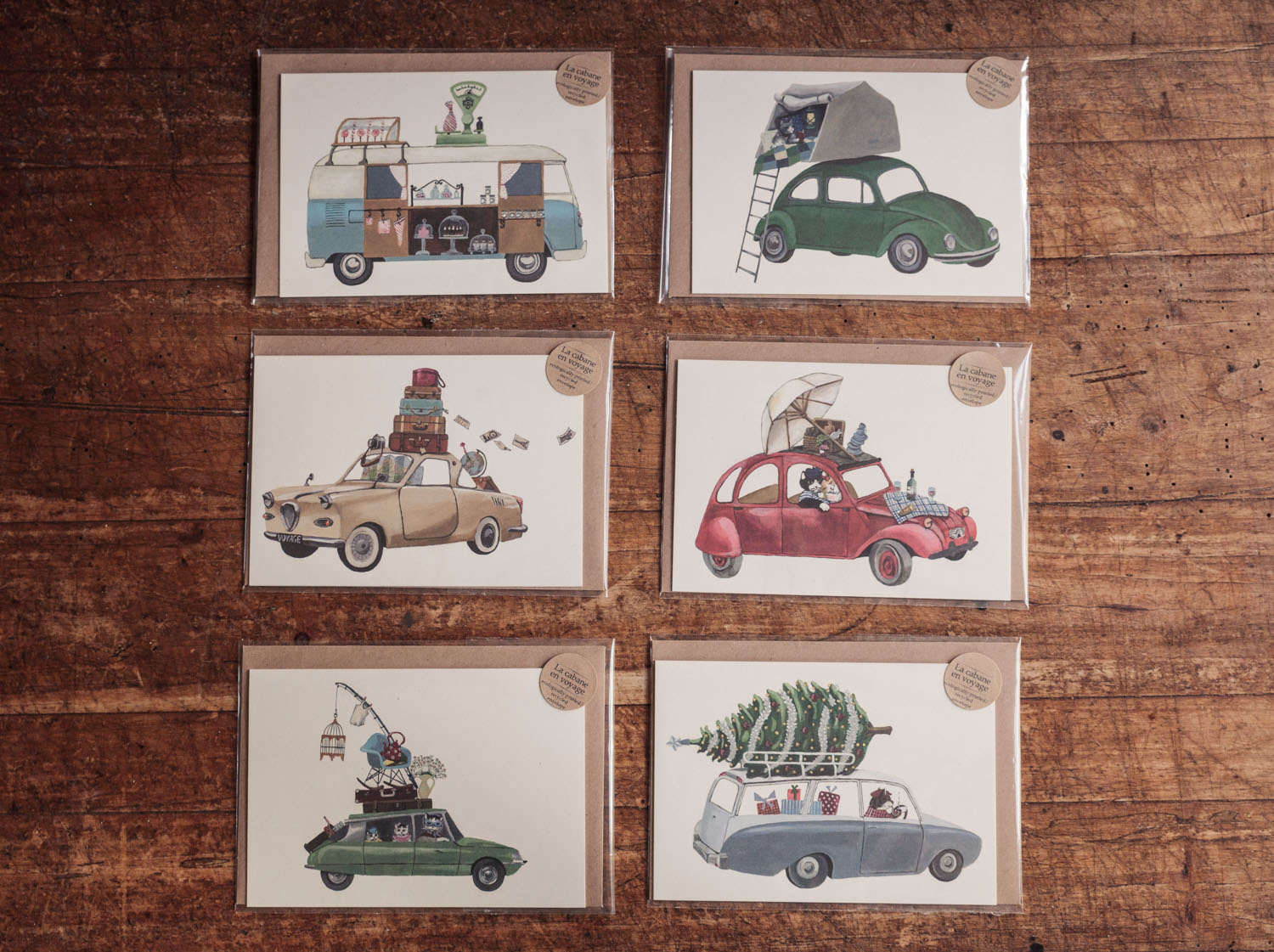 Cars & Cats Collection