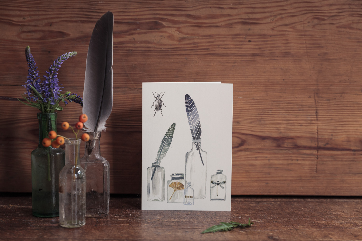 Nature's Curiousities Collection