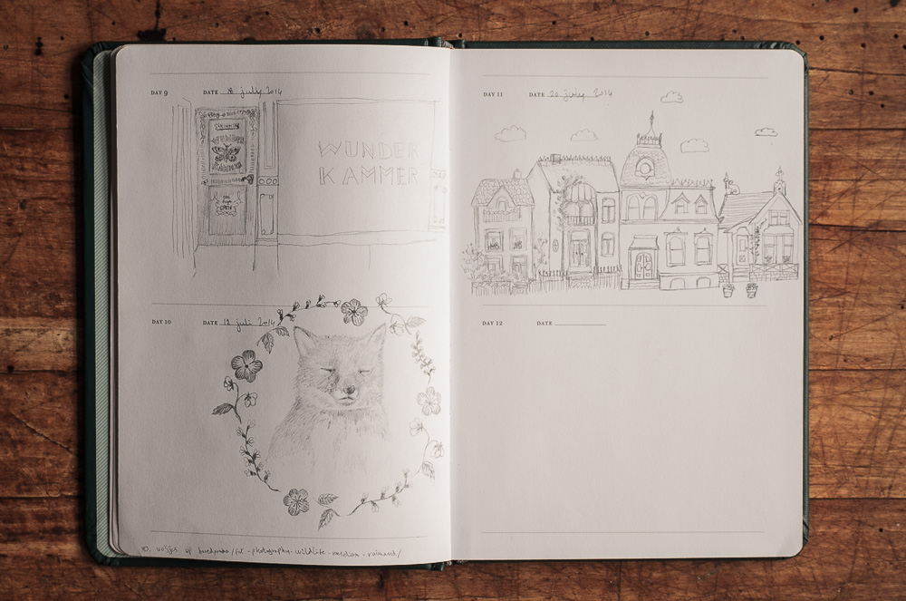 one sketch a day-2.jpg