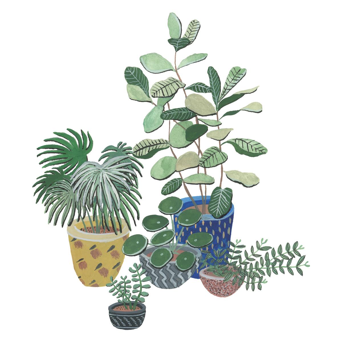 planten-stilleven-plantenillustratie-plantenschilderij-lacabaneenvoyage9.jpg