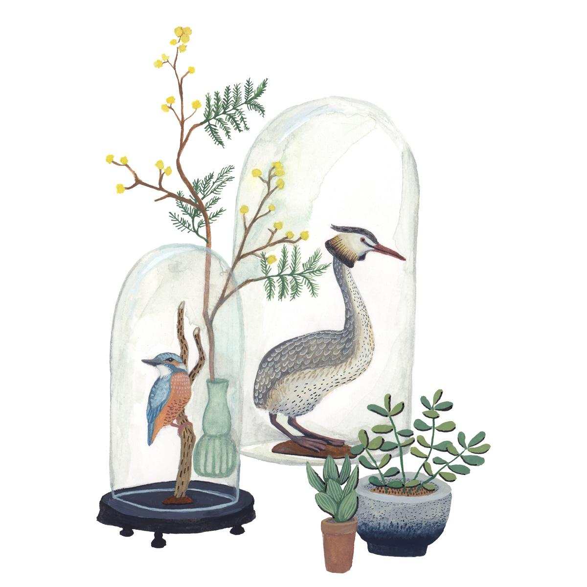 planten-stilleven-plantenillustratie-plantenschilderij-lacabaneenvoyage12.jpg