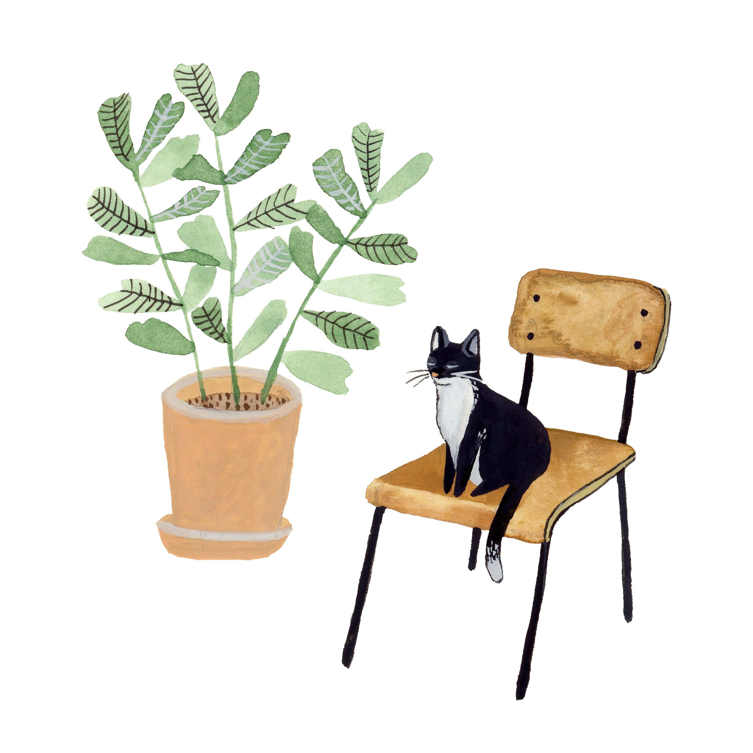 Cat. Plant. Chair.jpg