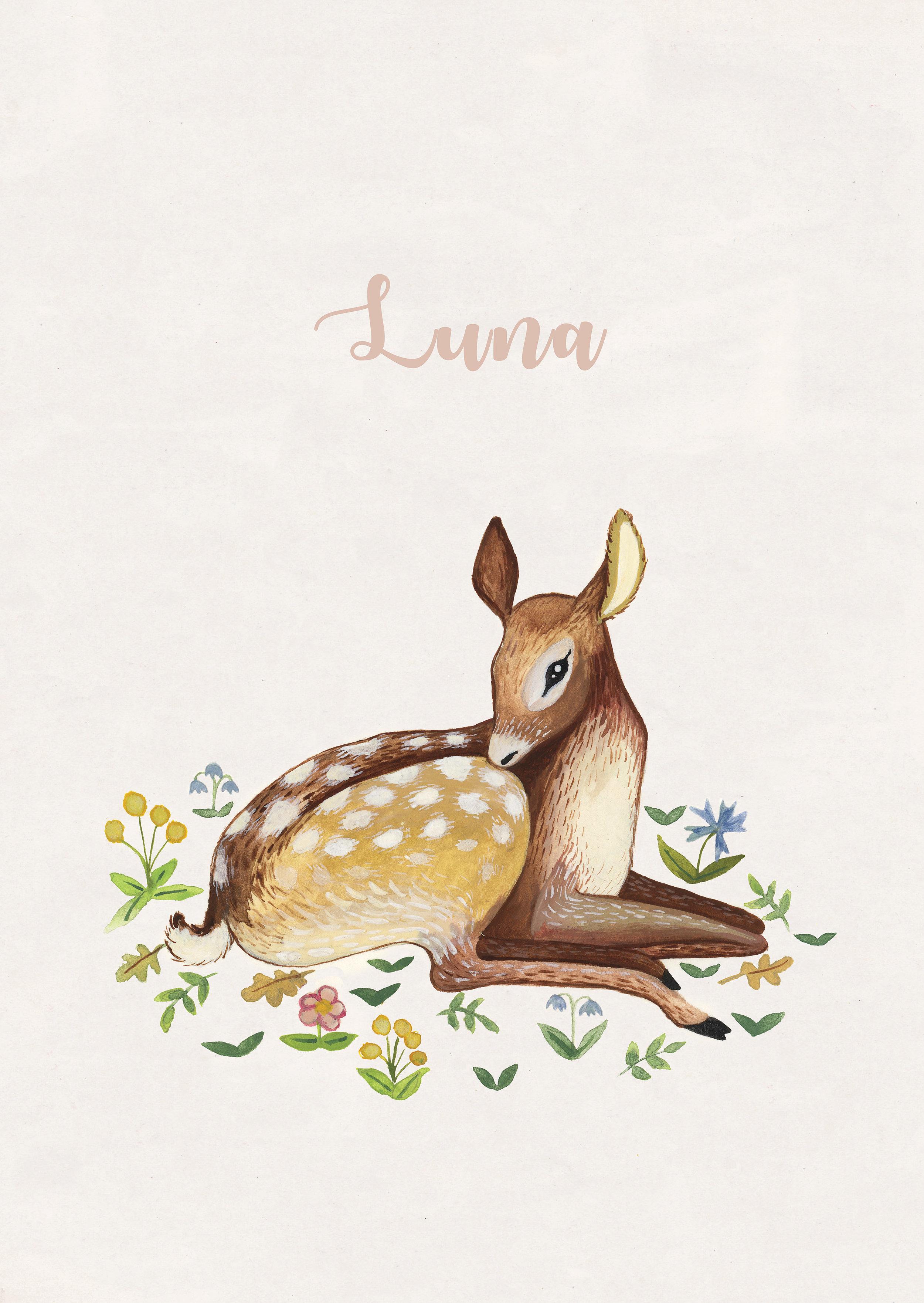 Luna voor.jpg