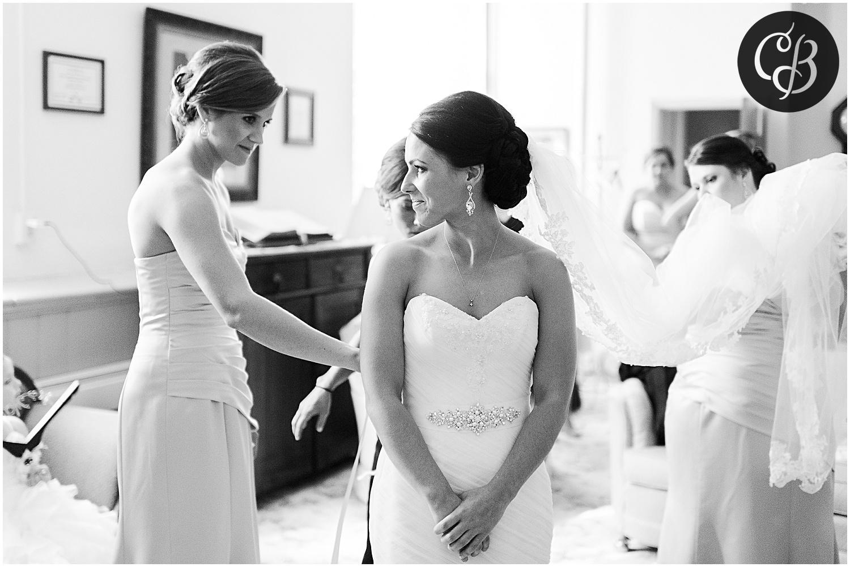 Jackson-Michigan-wedding_0268.jpg