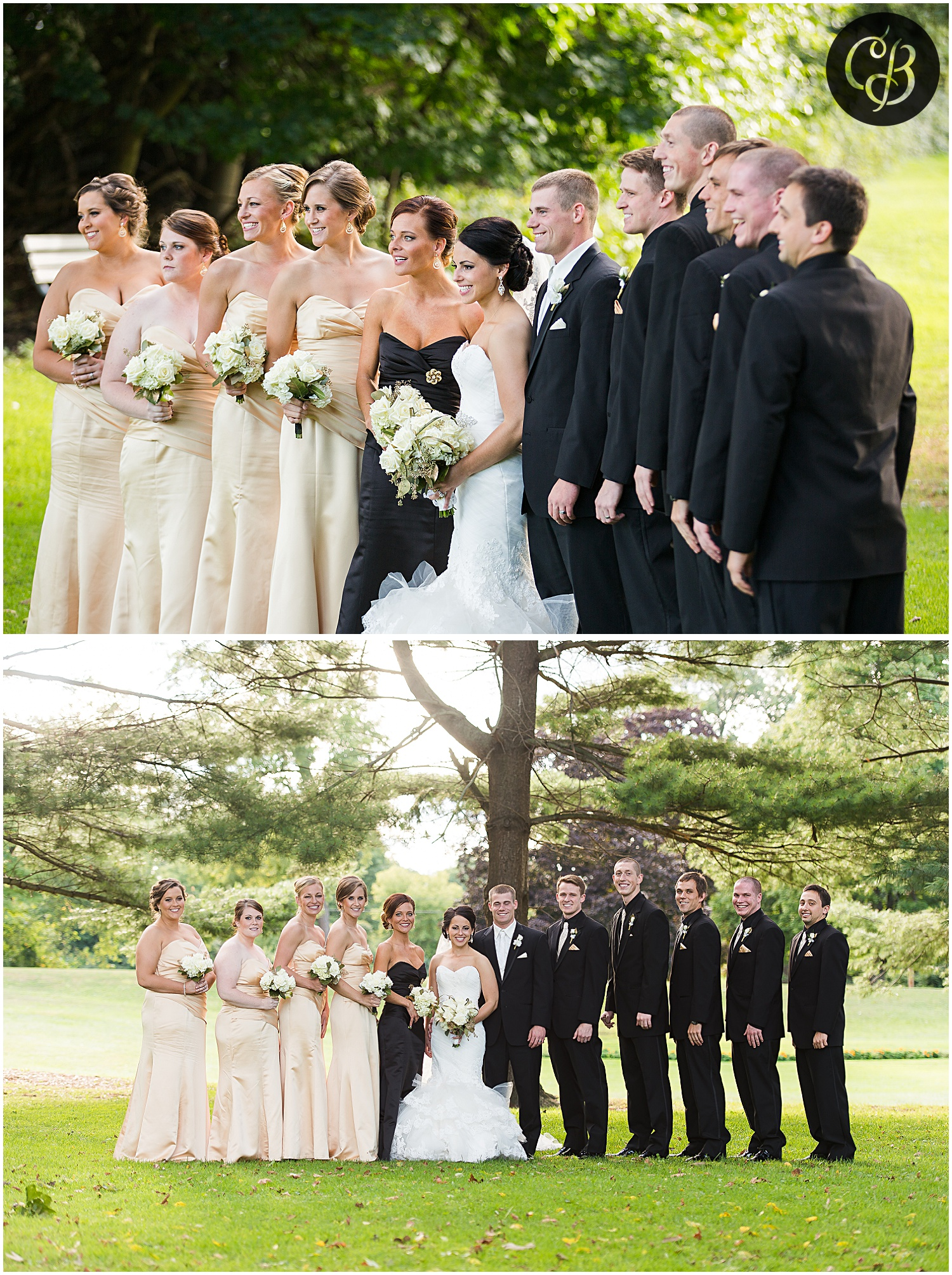 Jackson-Michigan-wedding_0286.jpg