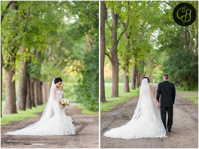 Jackson-Michigan-wedding_0294.jpg
