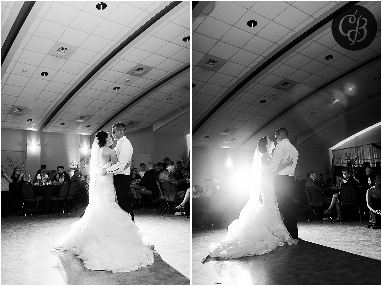 Jackson-Michigan-wedding_0297.jpg