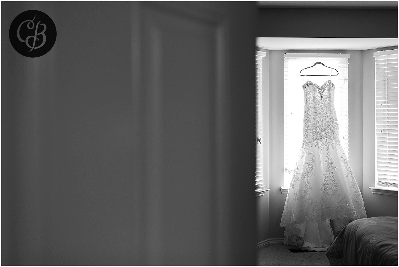 Best-Detroit-Wedding-Photographer_0002.jpg