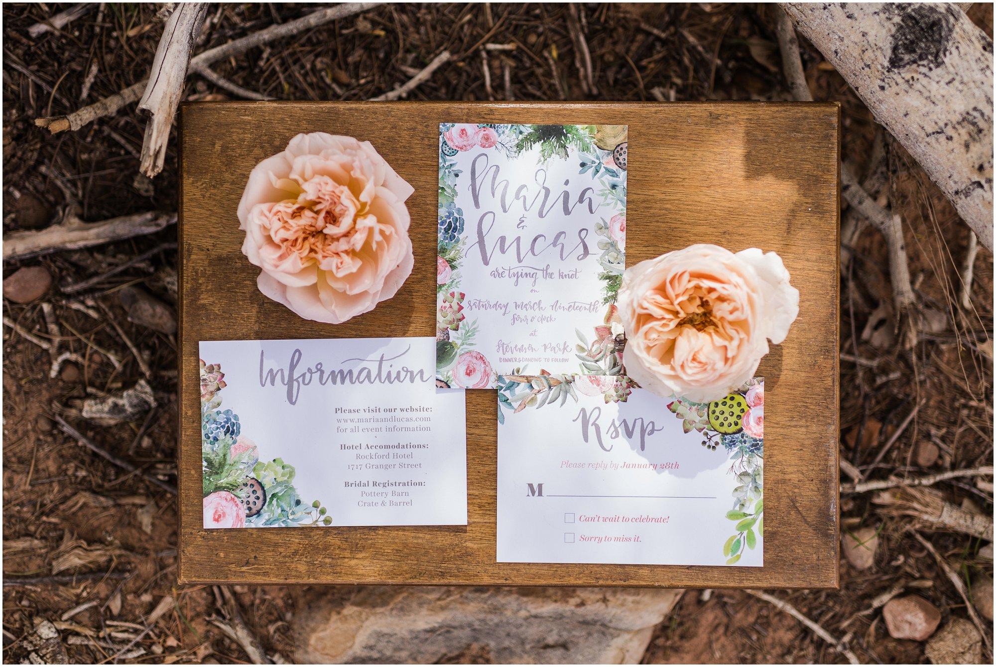 michigan-destination-wedding-photographer_0135.jpg