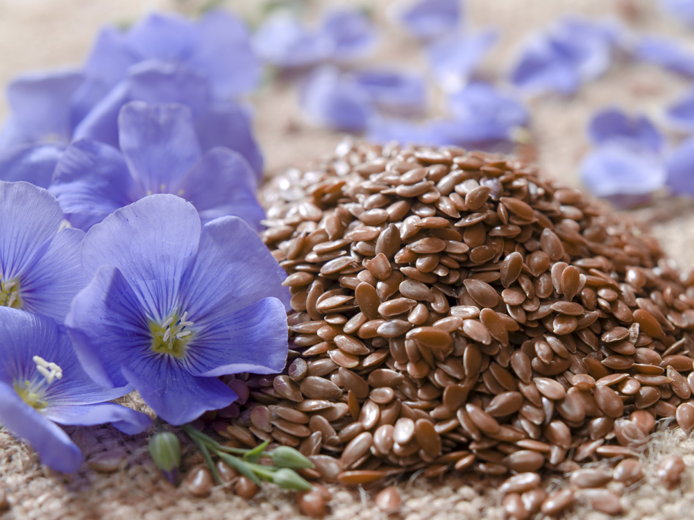 Linseeds or chia seeds for cellulite