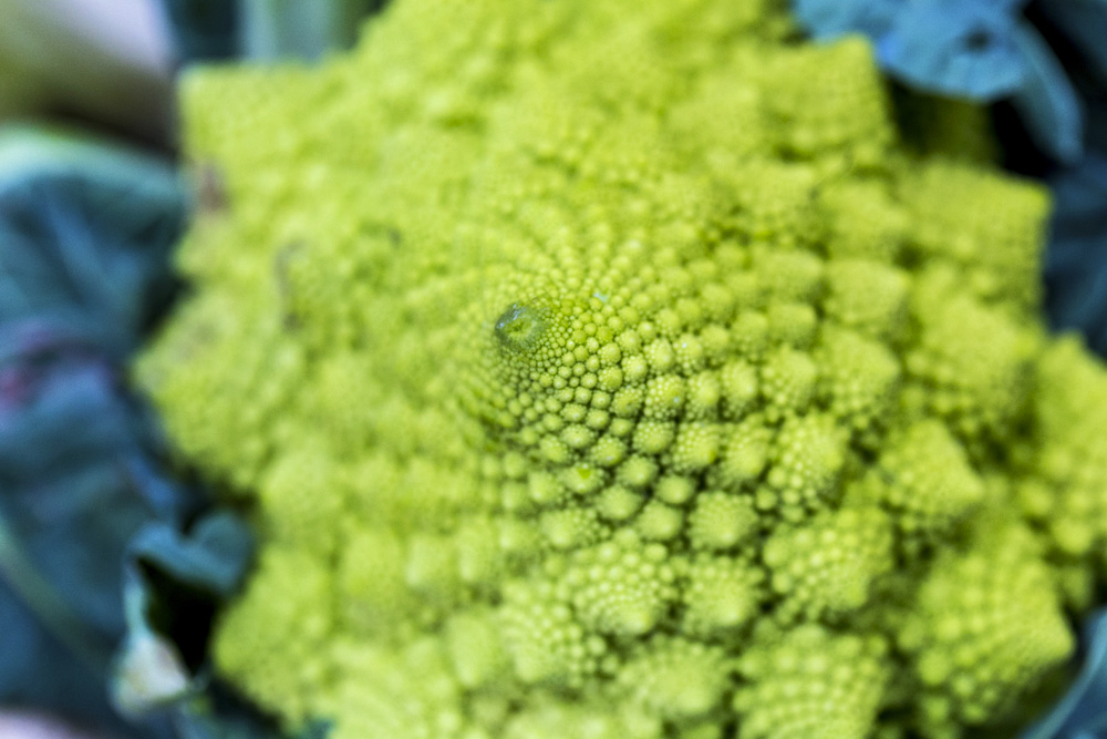 Cruciferous vegetables for cellulite