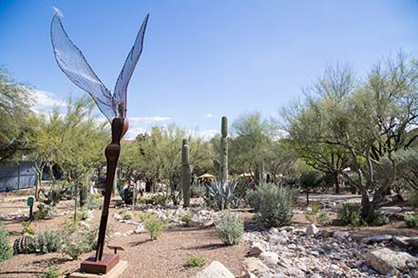 "At  Westin La Paloma , meeting attendees can enjoy the beautiful mountainous outdoors or choose to have a serene experience in the iconic 250-acre desert resort's Serenity Garden. The garden is a complimentary sanctuary for guests looking to extend Tucson's ""Free Yourself"" state of mind and quirky artistic culture into their next meeting."