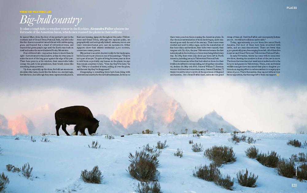 Intelligent Life magazine, Mar/Apr 2015 issue