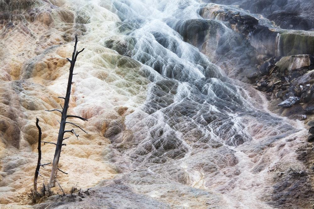 021215_Montana_Yellowstone-2902.jpg