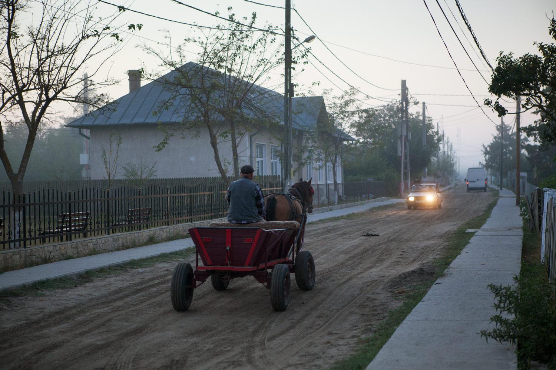 160911_Romania_Delta-9514.jpg