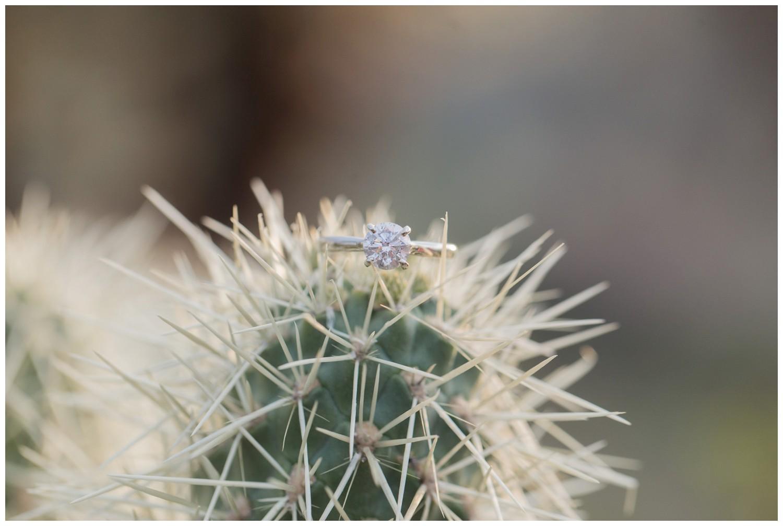 scottsdale-arizona-engagement-session_0018.jpg