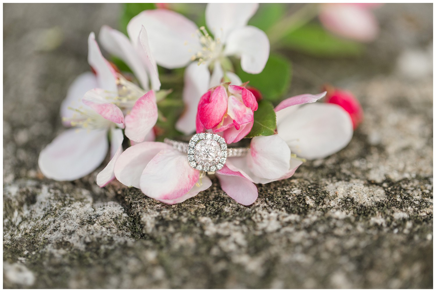 belwood-country-club-engagement-session_0014.jpg