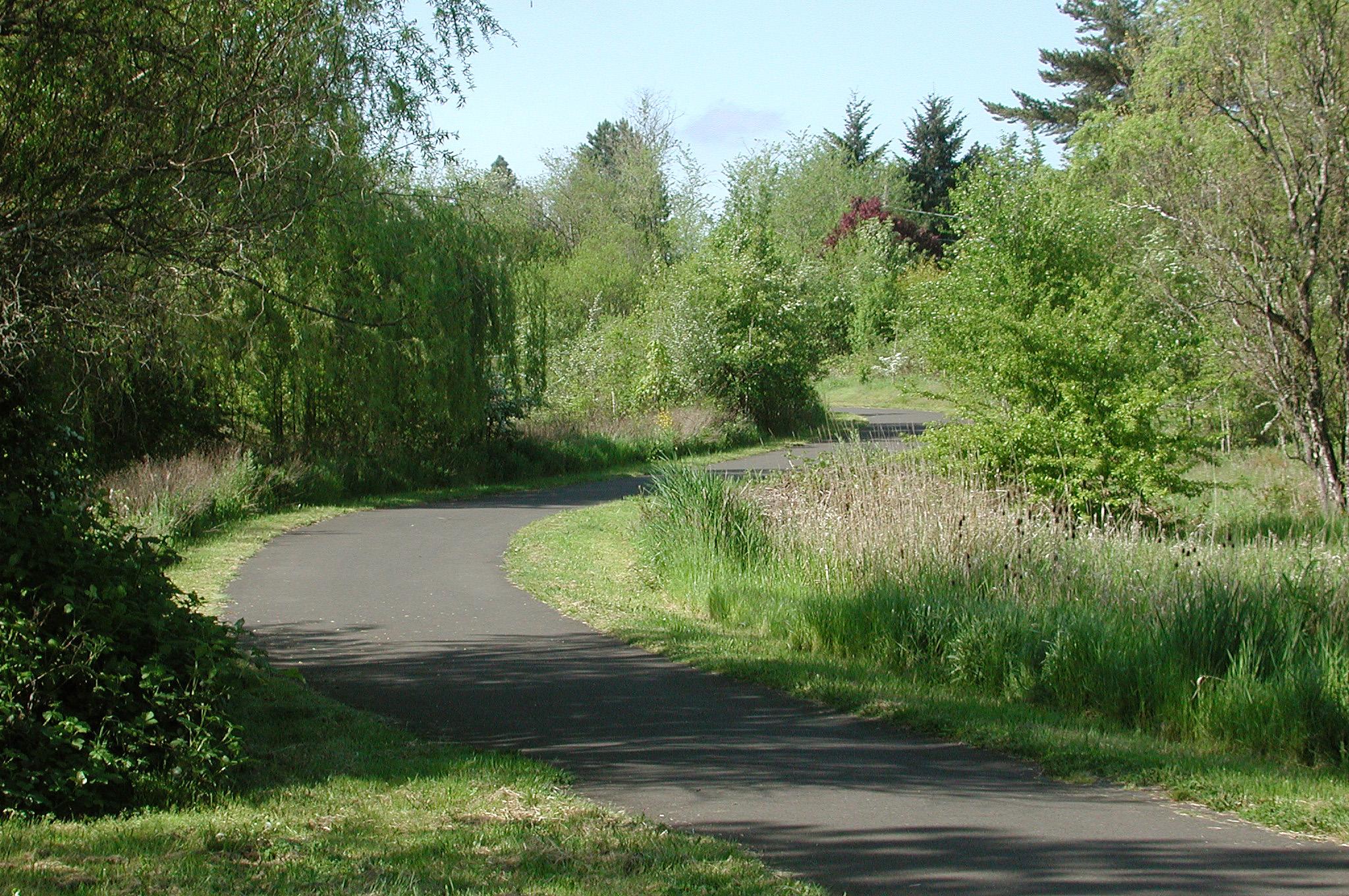 Sentier asphalté