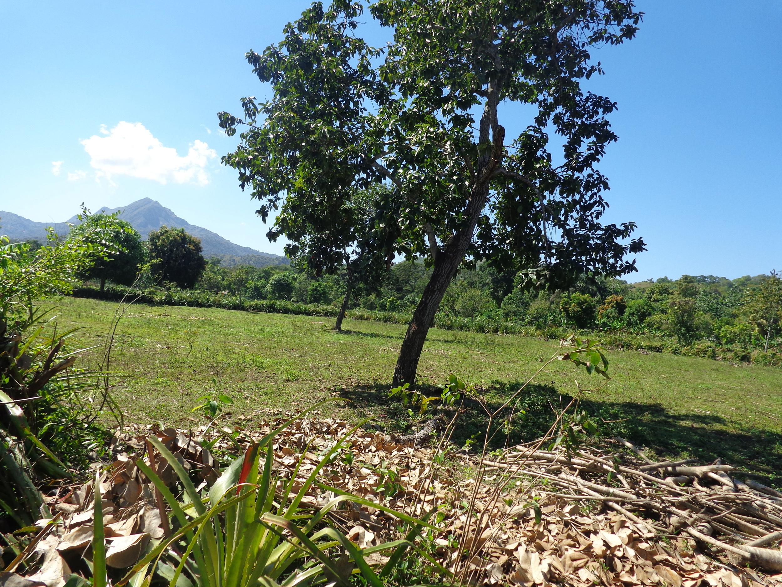 Land Deeded to MLI