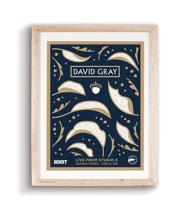 My poster for XRT'S David Gray show.