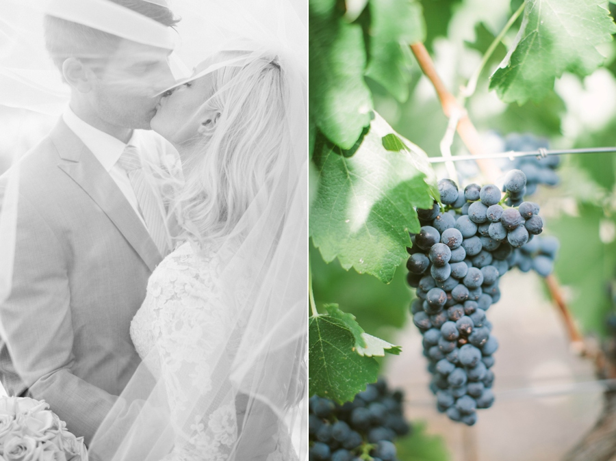 21_Charles_Krug_Winery_St_Helena_California_Wedding_Photo.JPG