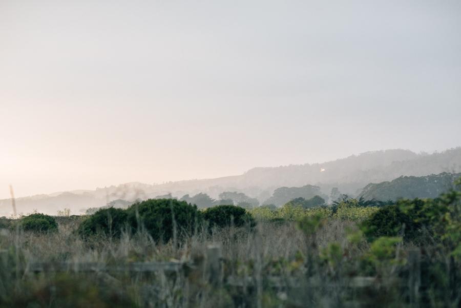 150_Half_Moon_Bay_California_Engagement_Photo.JPG