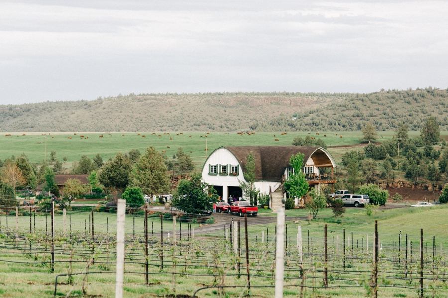 01_HopeFaithandCharityVineyards_Terrebone_Oregon_Wedding_Photo.JPG