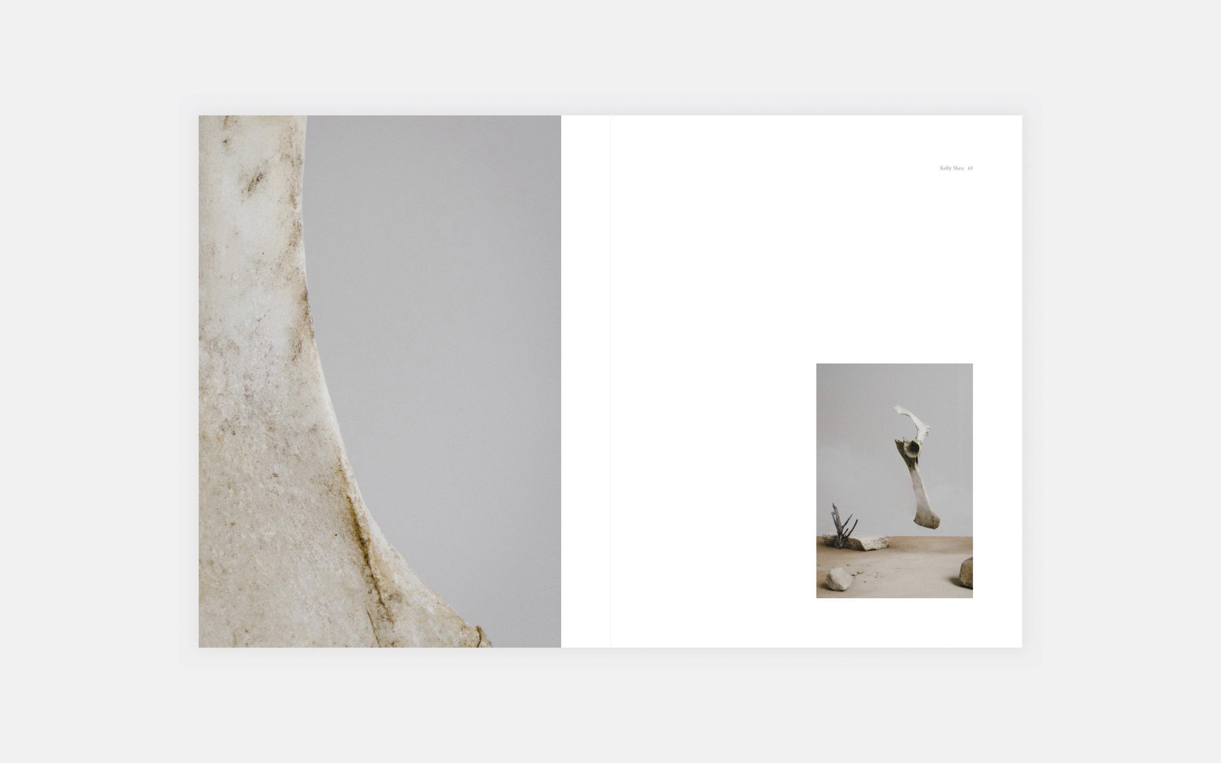 Water Journal Volume 4° — Kelly Shea 2.jpg