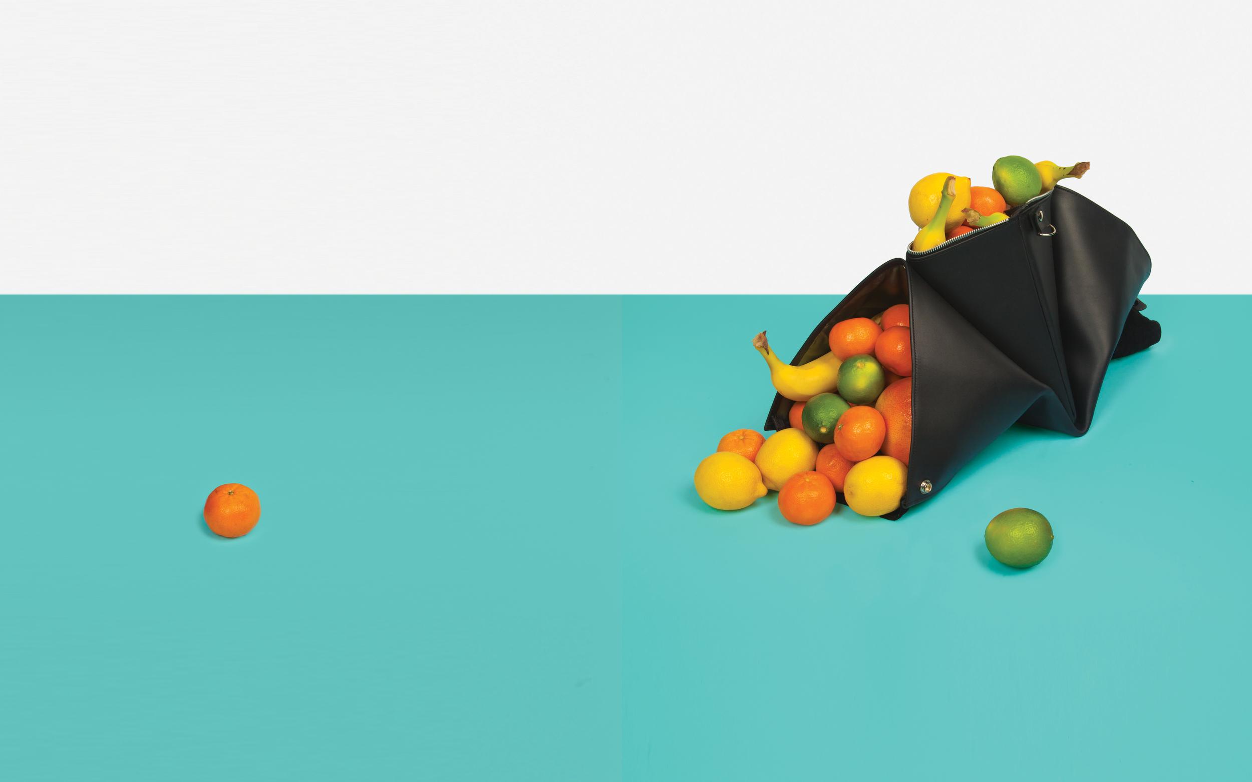 fruit_bagRGB.jpg