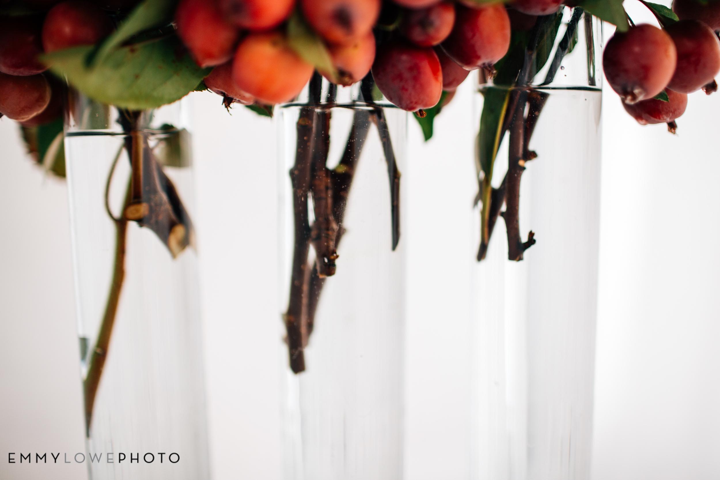 EmmyLowePhotoRocks.Sunflowers-16.jpg