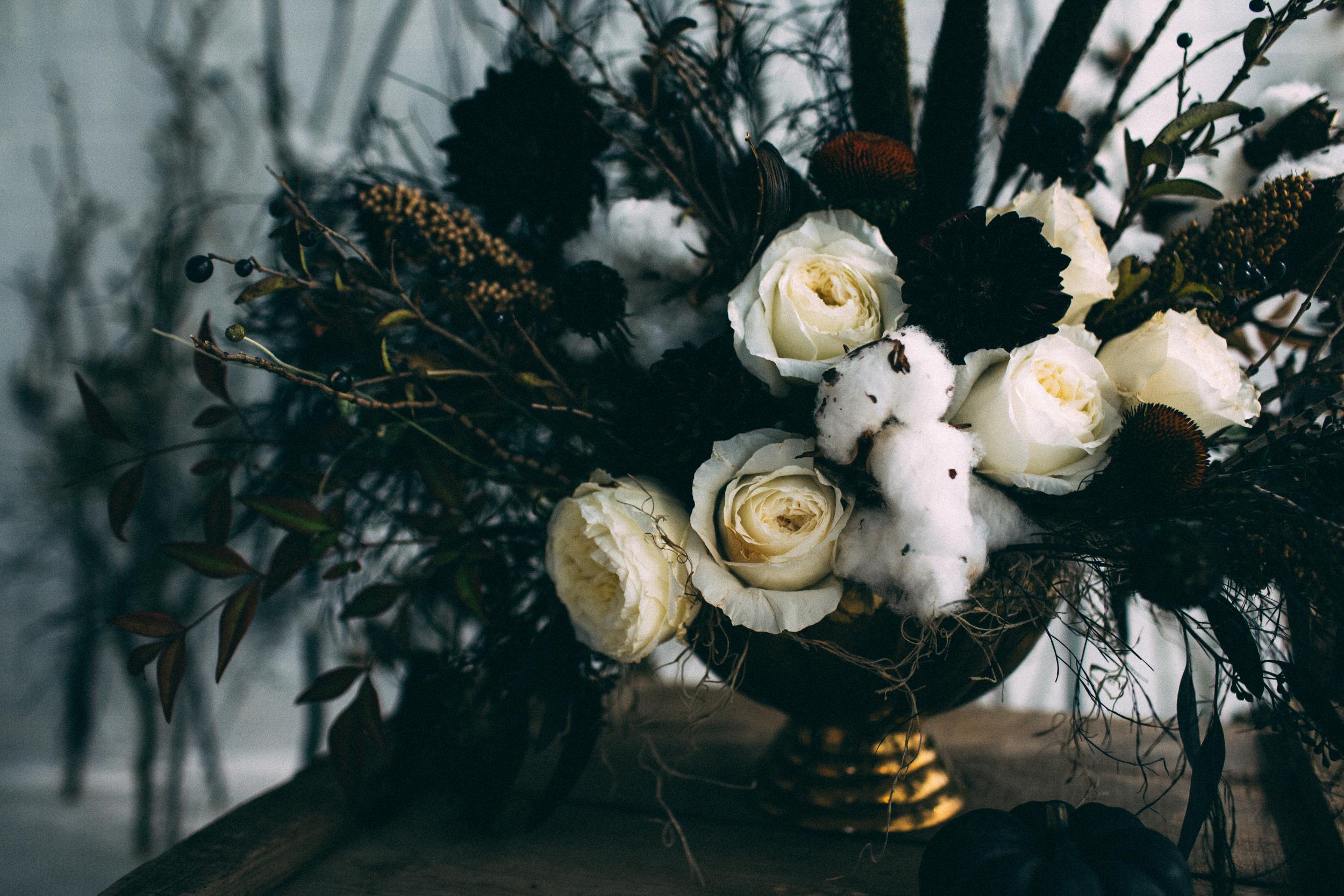 EmmyLowePhotoMegBlog-5.jpg