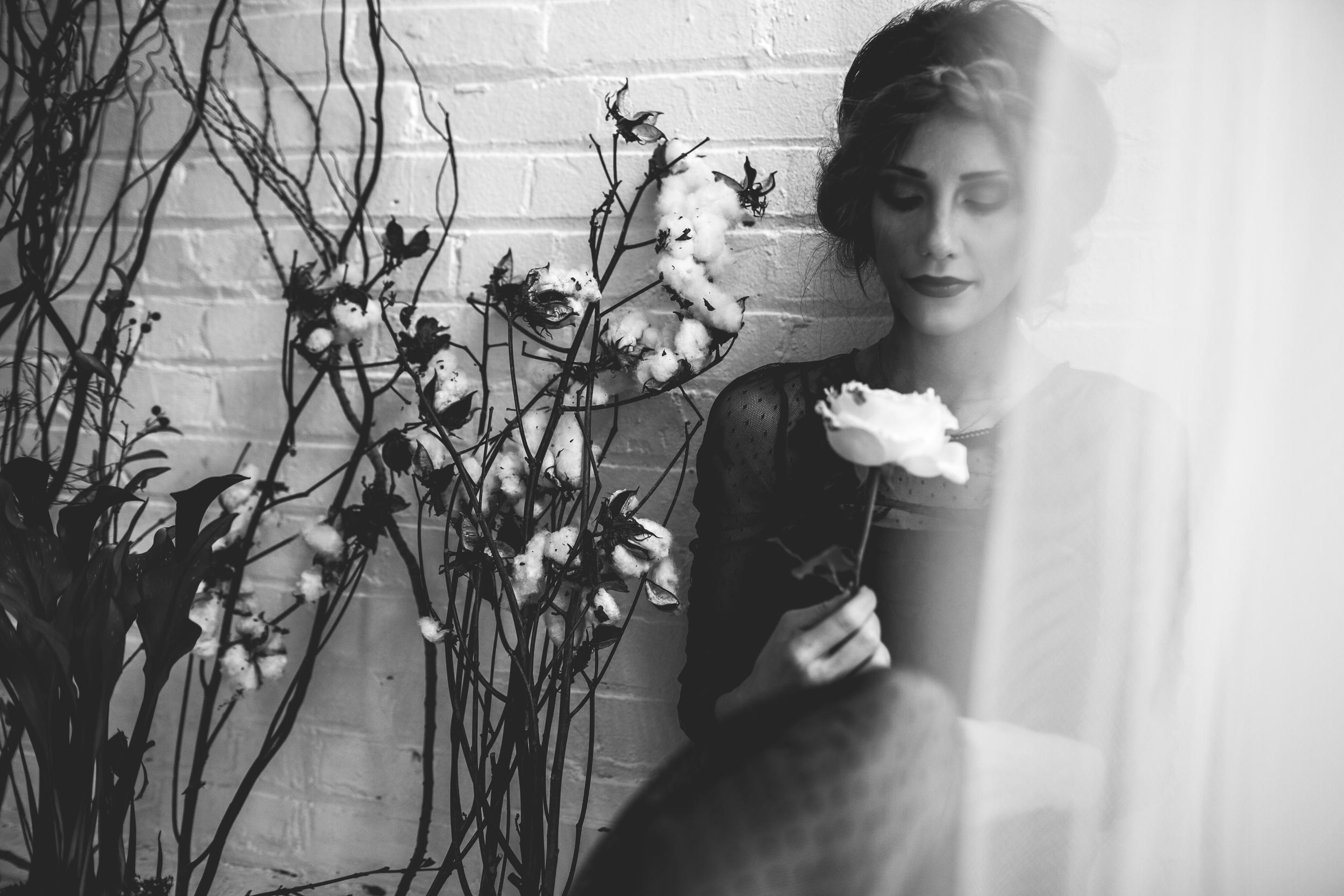 EmmyLowePhotoMegBlog-42.jpg