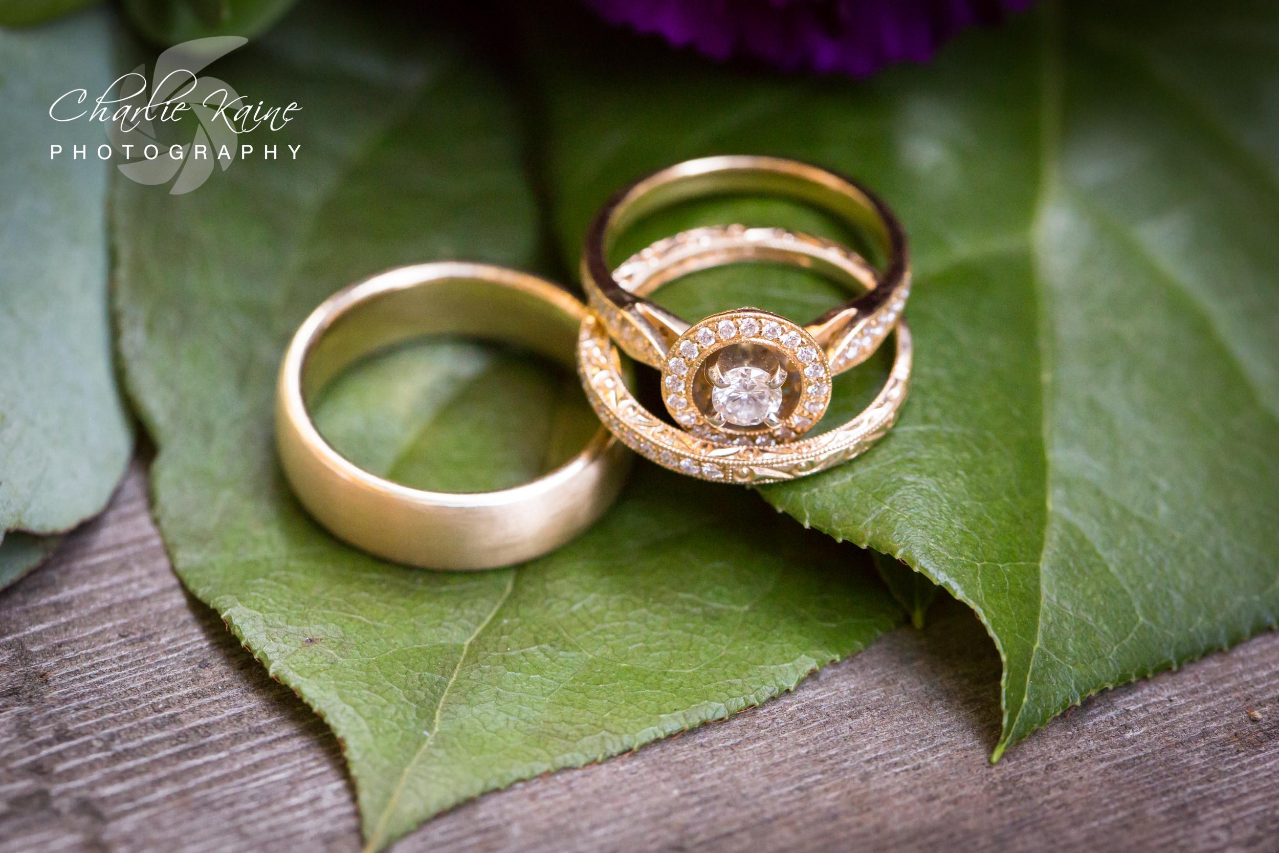Charlie Kaine Photographer | San Francisco Wedding Photographer