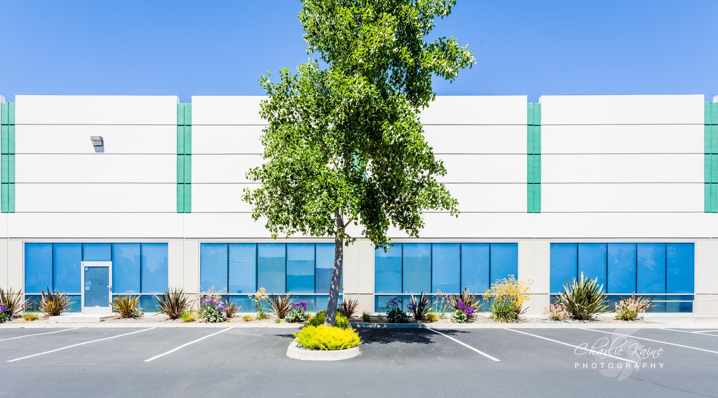 Commercial Real Estate - Freemont-1.jpg