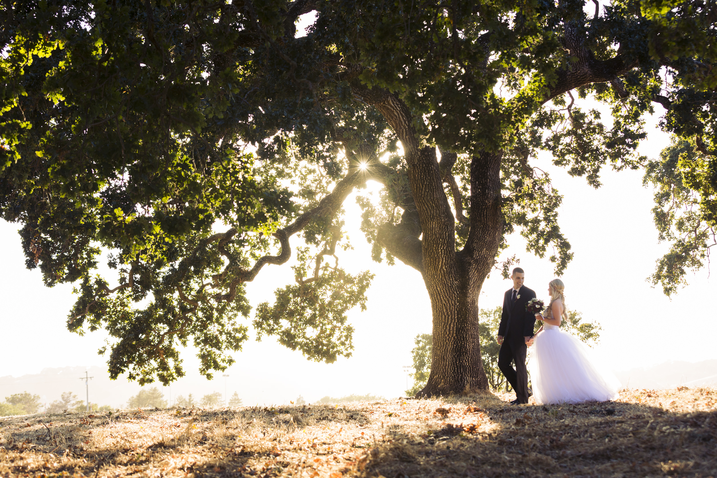 wedding-day-couple-session-bride-groom-large-tree-1.jpg
