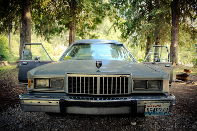 Thelma 1985 Grand Marquis Salmo Beautiful British Columbia Campground Go Pro Mounted