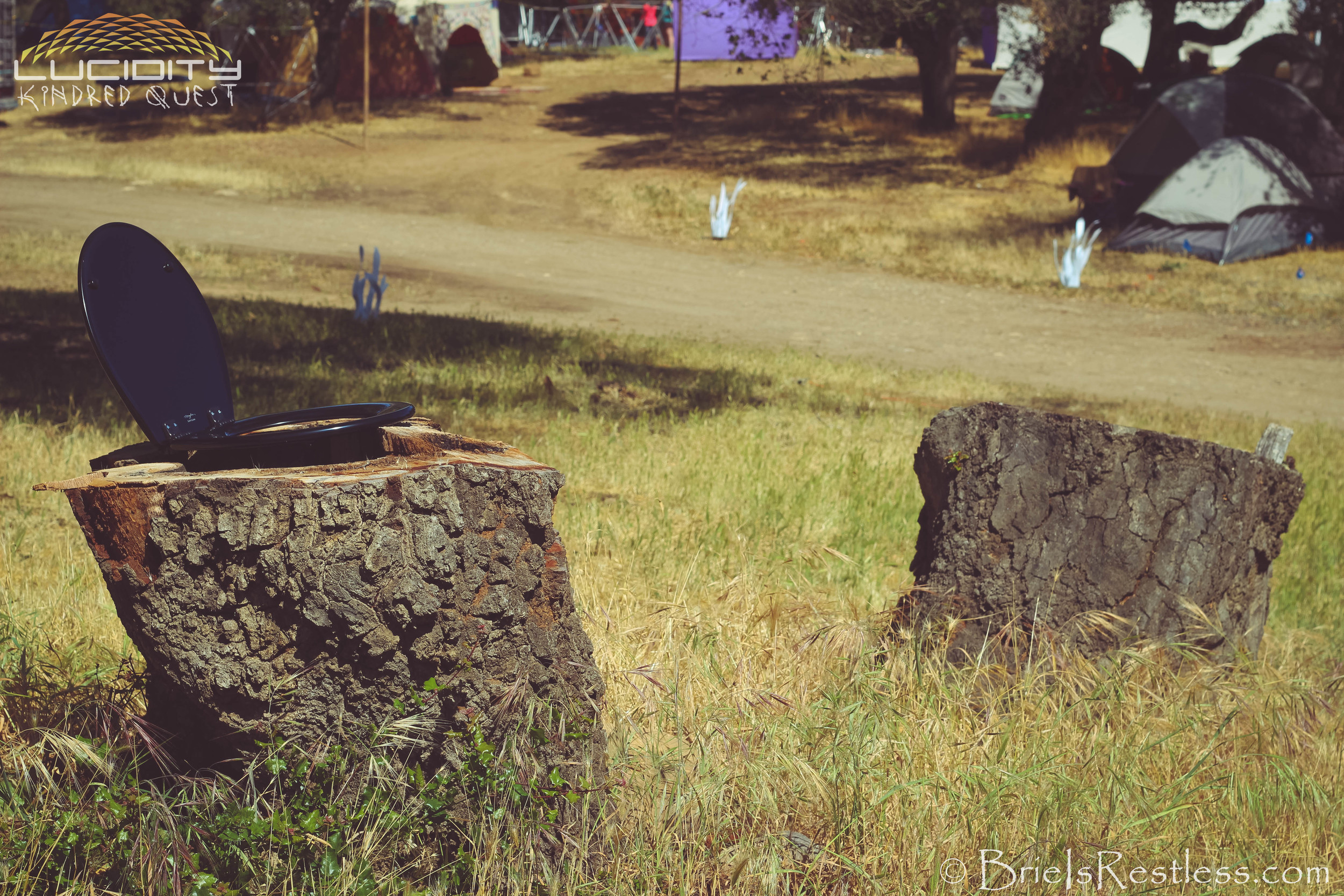 Toilet Seats and Tree Trunks and Grass - Luciditiy - Kindred Quest - Build - April 2015 (1 of 1)-1.JPG
