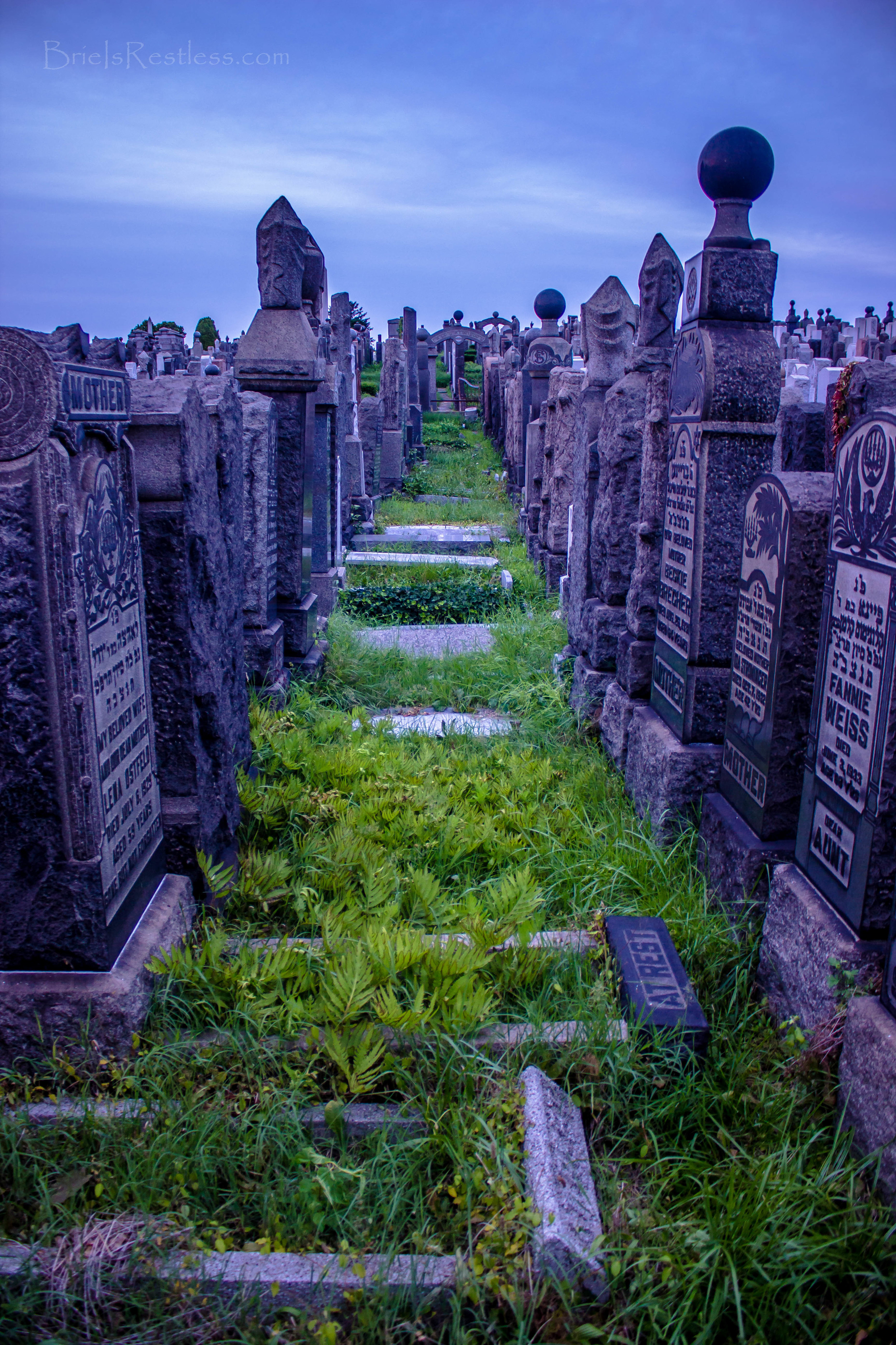 Cemetery In Queens - NYC (1 of 1)-5.jpg