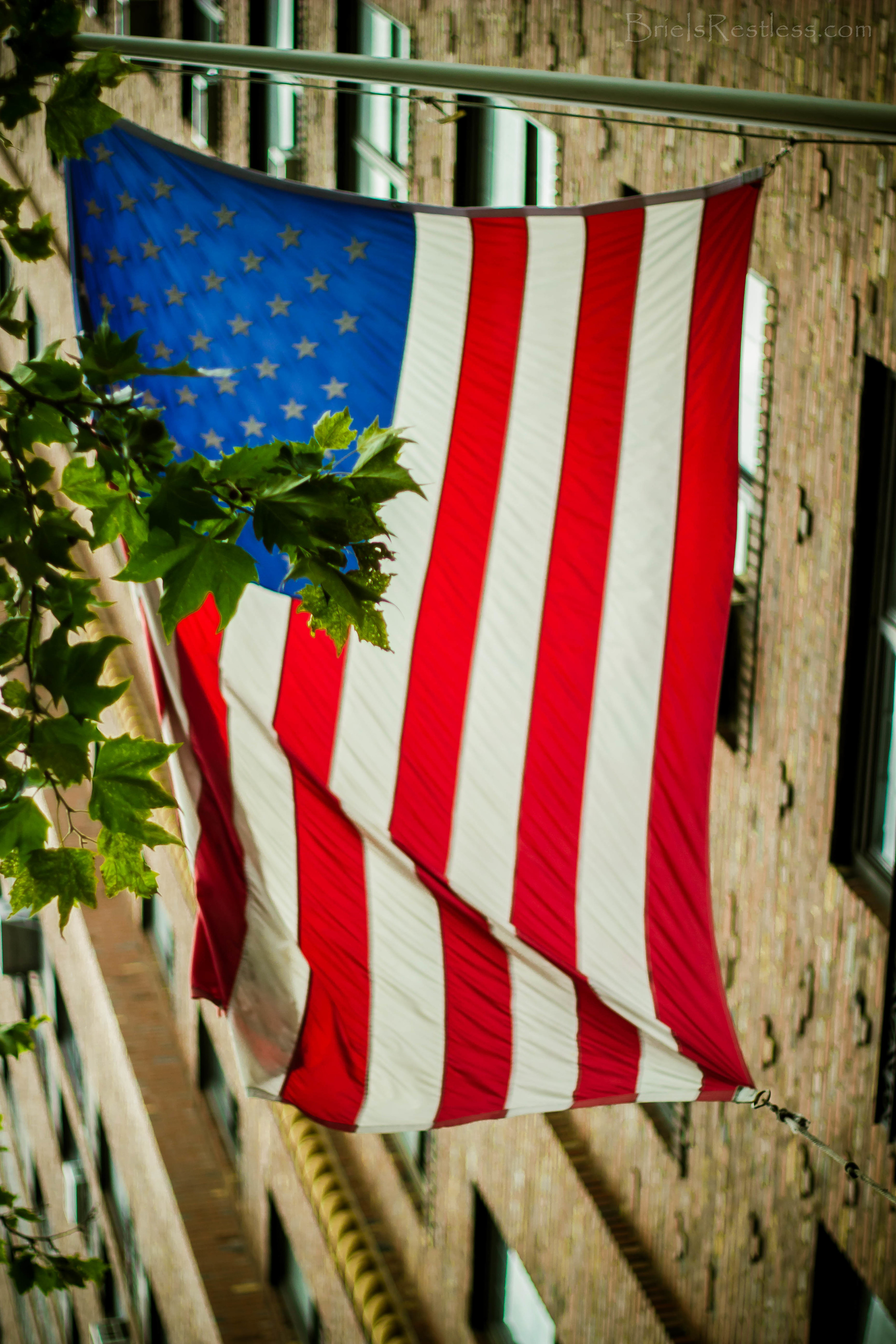 Flag in Chelsea - NYC.jpg