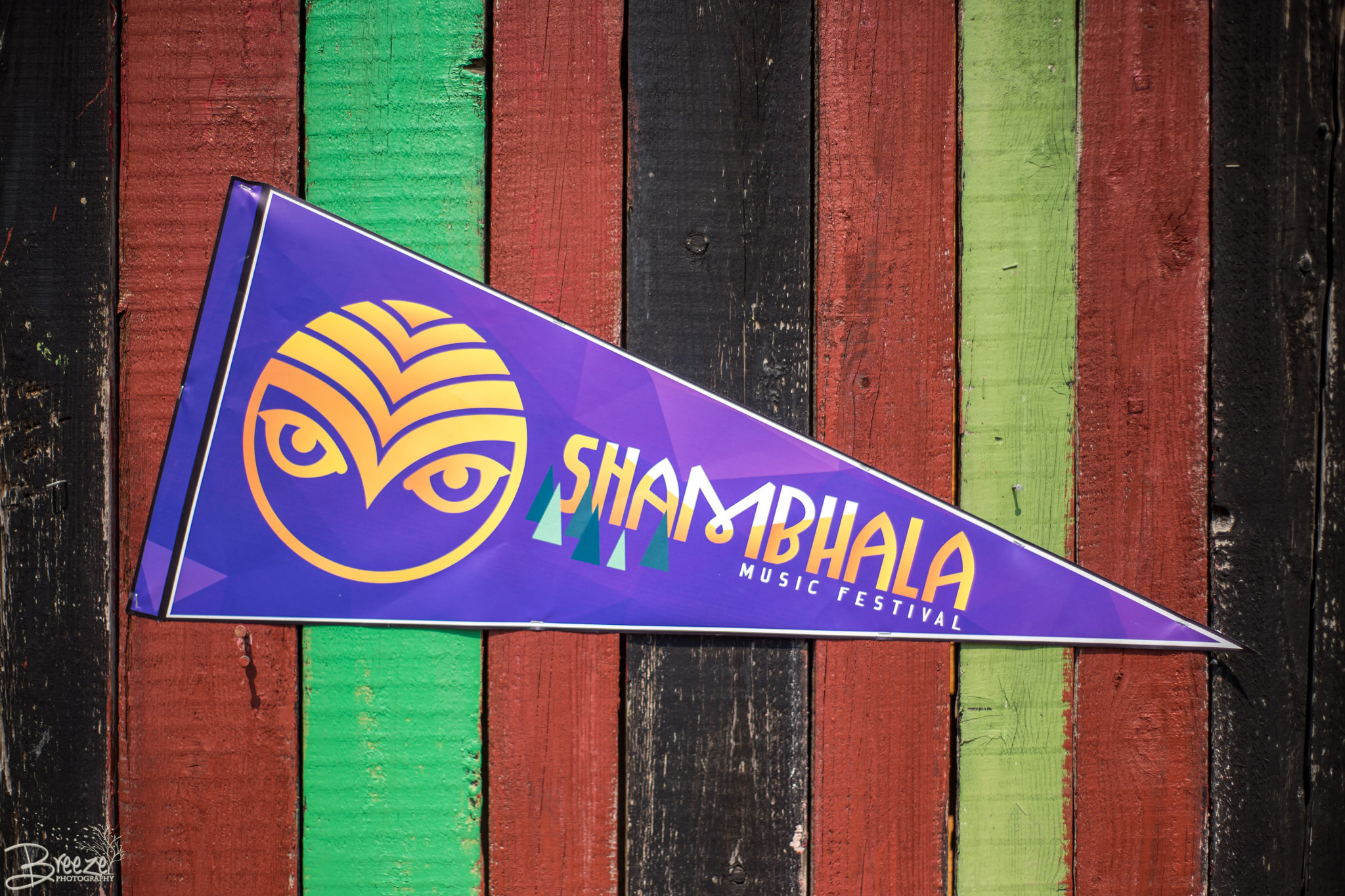 Brie'Ana Breeze Photography & Media - Shambhala 2018-9868.jpg
