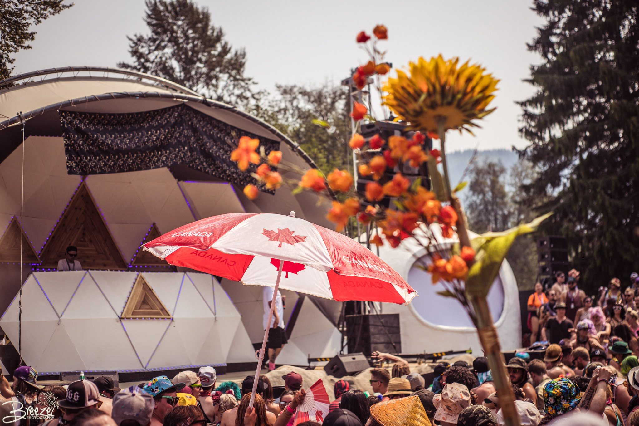 Brie'Ana Breeze Photography & Media - Shambhala 2018-9793.jpg