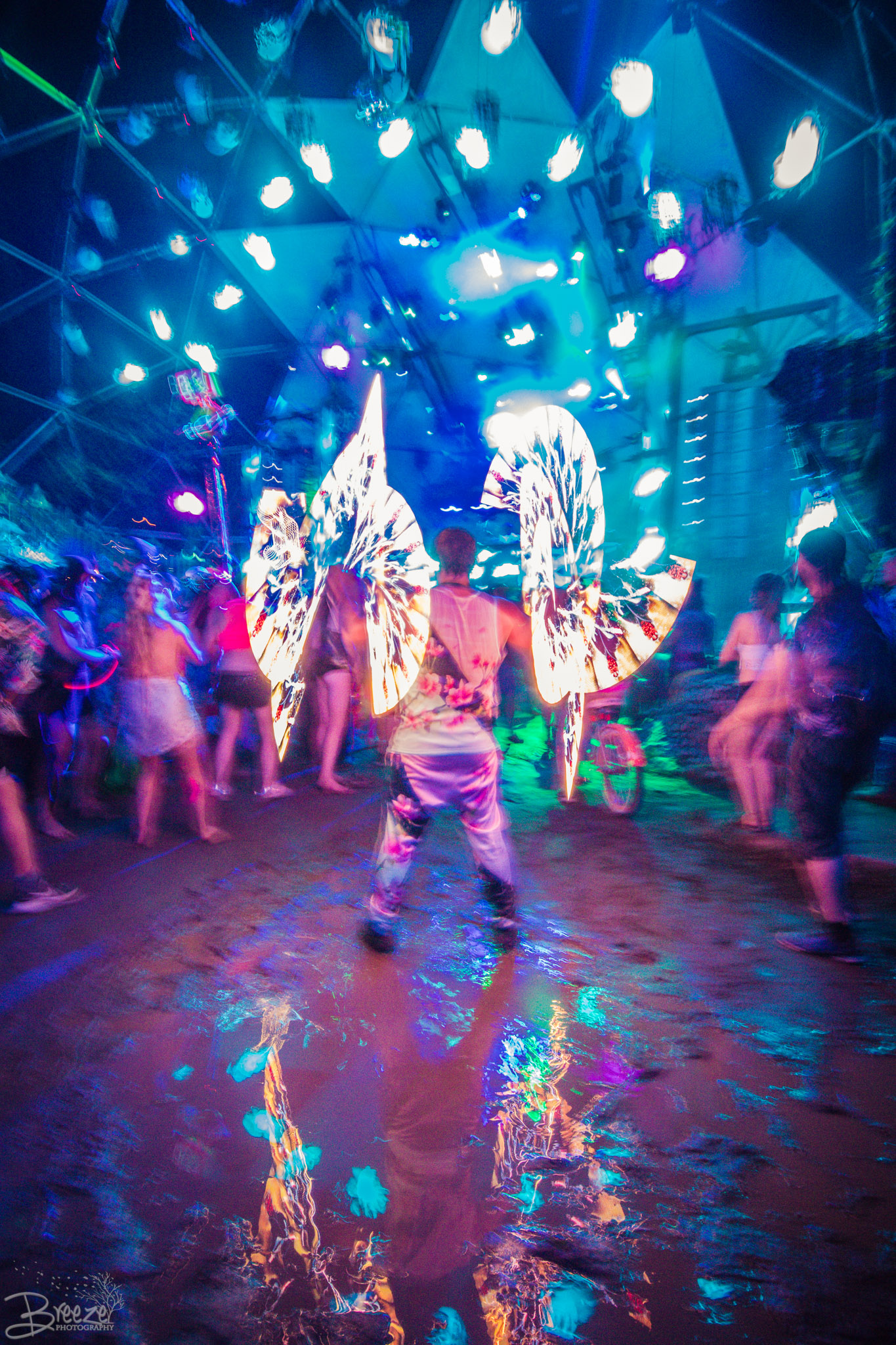 Brie'Ana Breeze Photography & Media - Shambhala 2018-0875.jpg