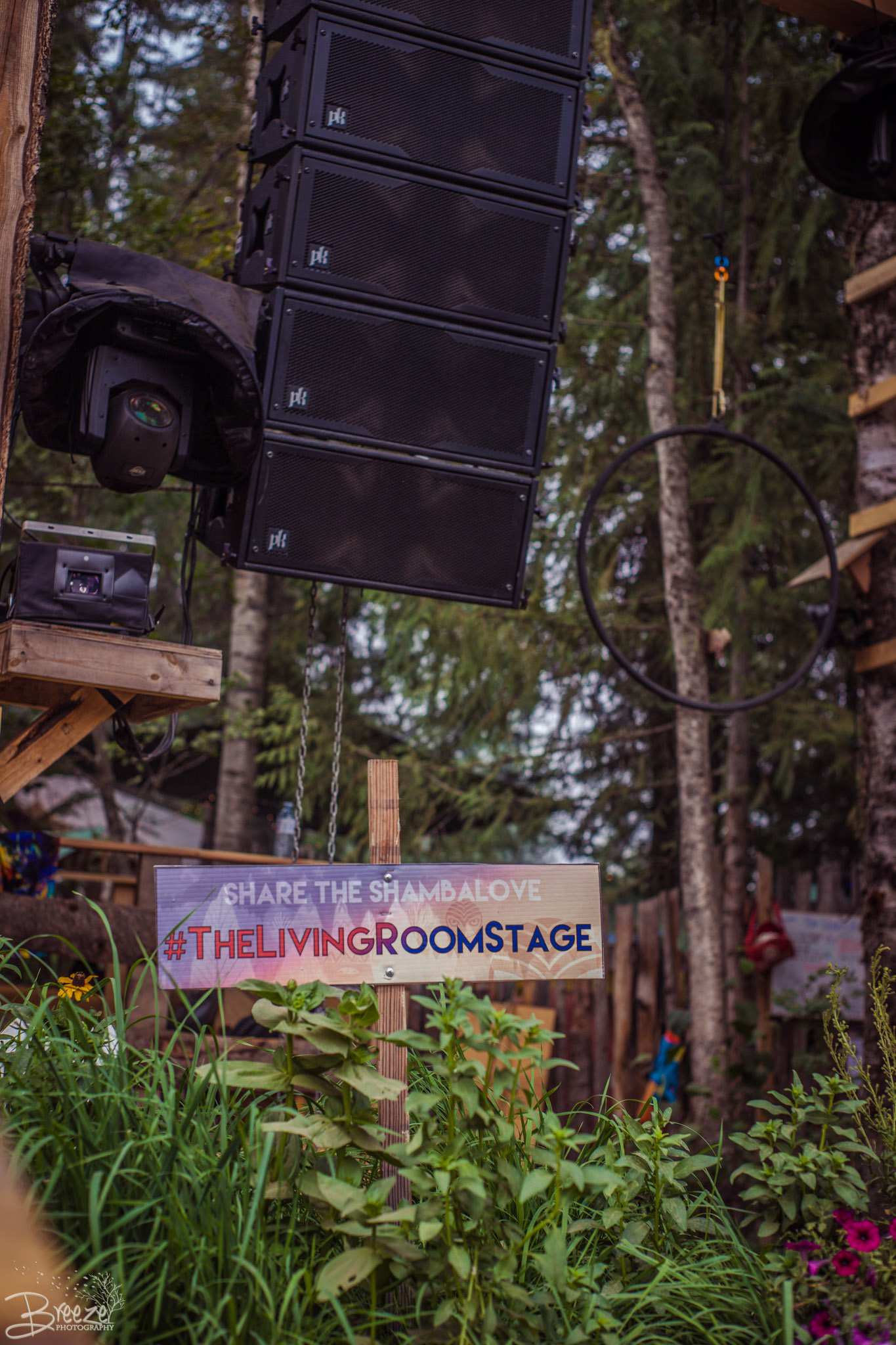 Brie'Ana Breeze Photography & Media - Shambhala 2018-1725.jpg