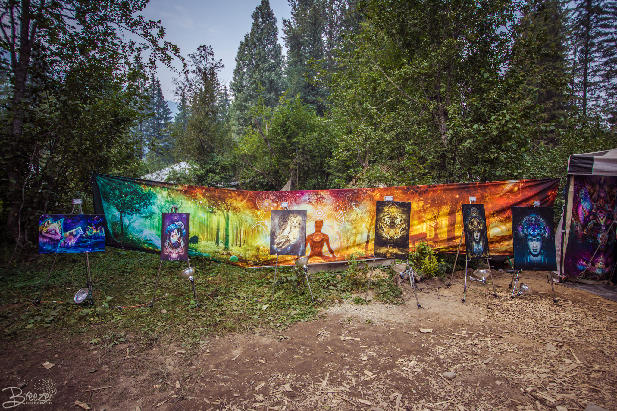 Brie'Ana Breeze Photography & Media - Shambhala 2018-1735.jpg