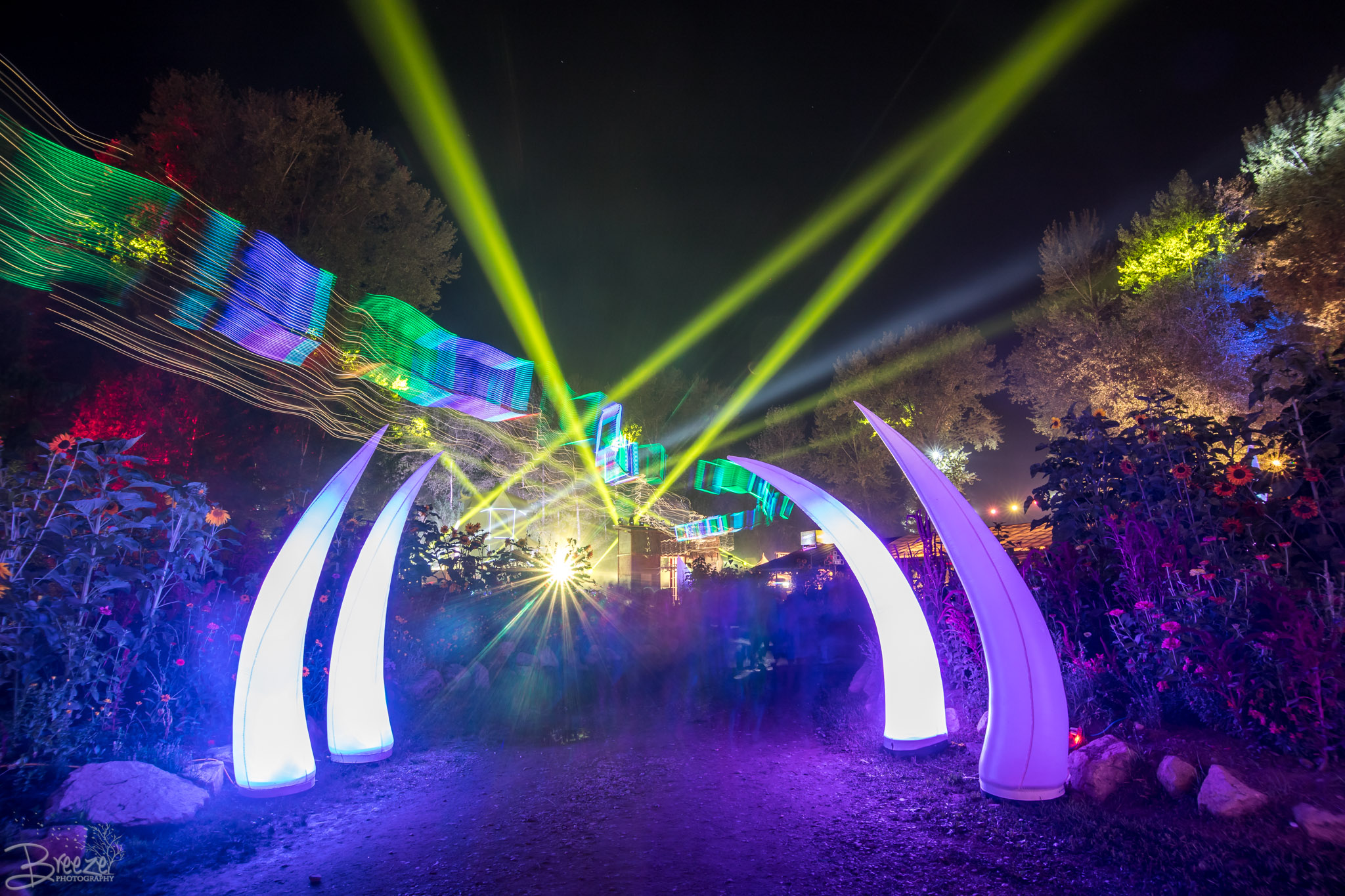 Brie'Ana Breeze Photography & Media - Shambhala 2018-0255.jpg