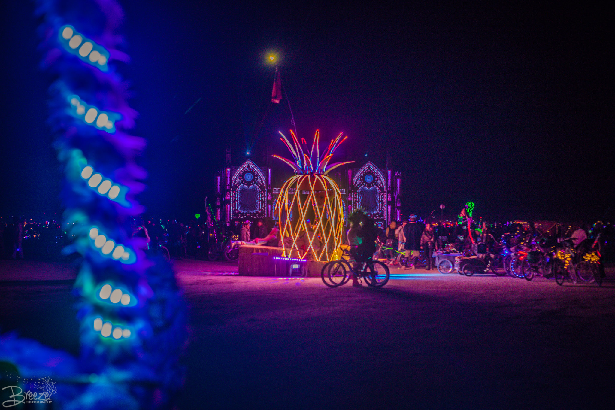 Brie'Ana Breeze Photography & Media - Burning Man 2018-4226.jpg