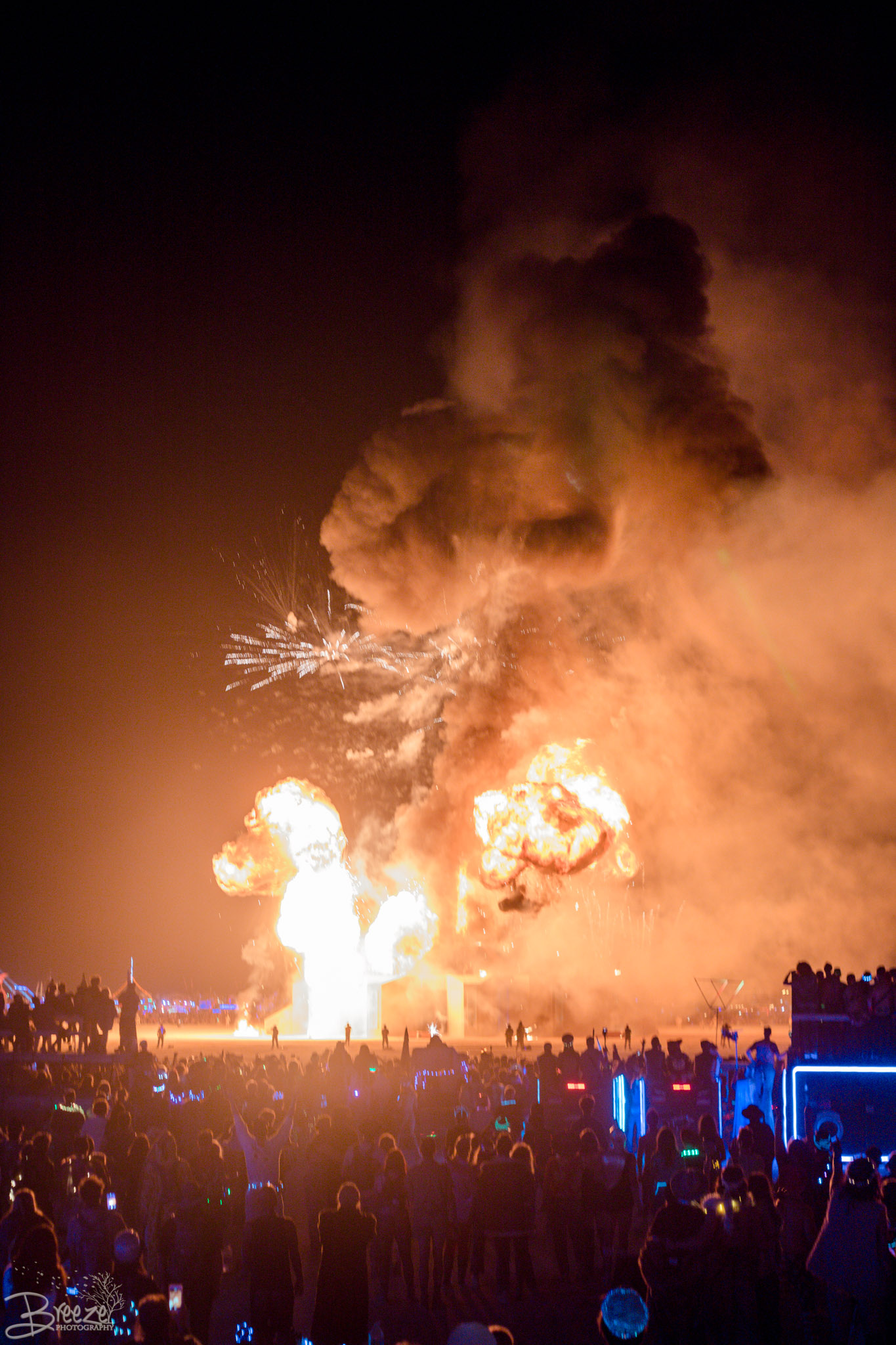 Brie'Ana Breeze Photography & Media - Burning Man 2018-4366.jpg