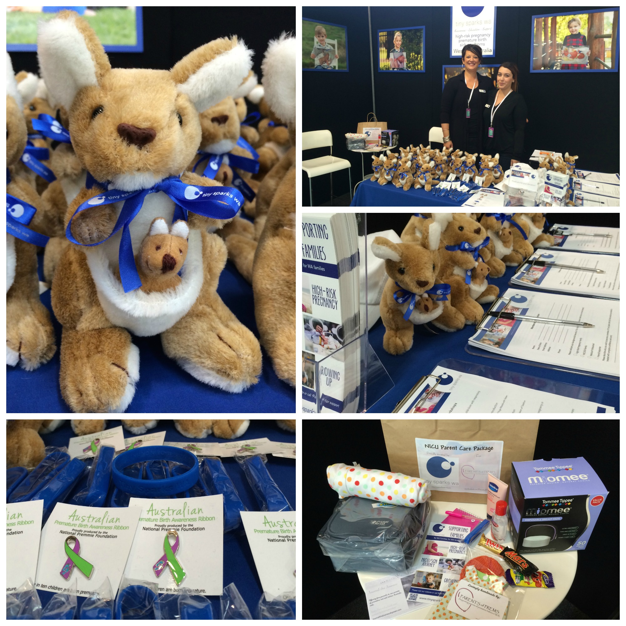 Pregnancy Babies and Children's Expo 2014